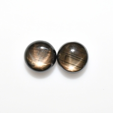 Black Star Sapphire Cab Round 8.25mm Approximately 6.00 Carat Matching Pair