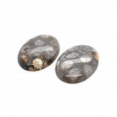 Fossil Coral Cab Oval 22x16mm Matching Pair 30.65 Carat