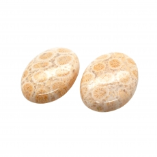 Fossil Coral Cab Oval 26x18mm Matching Pair 40.25 Carat