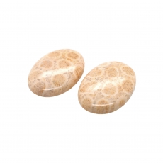 Fossil Coral Cab Oval 26x18mm Matching Pair 40.35 Carat