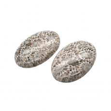 Fossil Coral Cab Oval 30x20mm Matching Pair 53.60 Carat