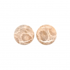 Fossil Coral Cab Round 21mm Matching Pair 37.95 Carat