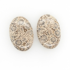 Fossil Coral Cabs Oval 30x20mm Matching Pair 48.30 Carat