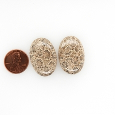 Fossil Coral Cabs Oval 30x20mm Matching Pair 48.80 Carat