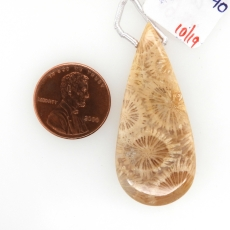 Fossil Coral Drop Almond Shape 40x20mm Drilled Bead Single Pendant Piece