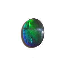 Fossilized Ammolite Oval 16x12mm  Approximately 4.64 Carat