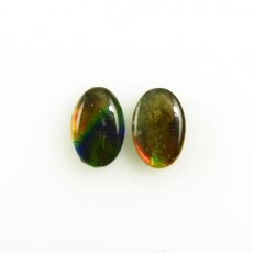 Fossilized Ammolite Oval Shape 6x4mm Approximately 0.99 Carat