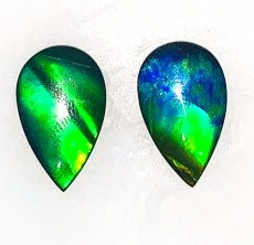 Fossilized Ammolite Pear 18x11mm Matching Pair Approximately 9.40 Carat