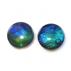Fossilized Tri -Color Ammolite Round 12mm  Matching Pair Approximately 7.76 Carat