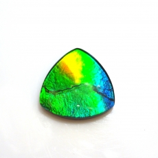 Fossilized Tri- Color Ammolite Trillion 15x15mm  Approximately 5.70 Carat