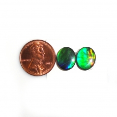 Fossilized Tri Color Ammolite Oval 12x10mm  Approximately 5.85 Carat
