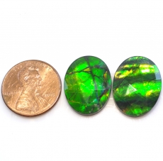Fossilized Tri Color Ammolite Oval 20x15mm Approximately 18.50 Carat
