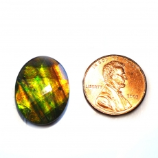Fossilized Tri Color Ammolite Oval 20x15mm Matching Pair Approximately 8.96 Carat