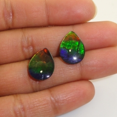 Fossilized Tri Color Ammolite Pear 16x12mm Matching Pair Approximately 10.01 Carat